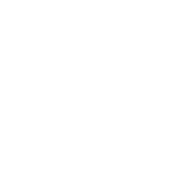 carl_f_bucherer light