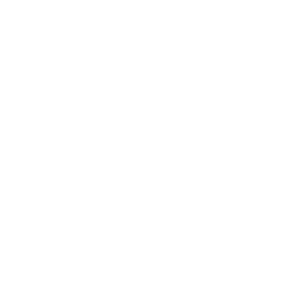 patek light