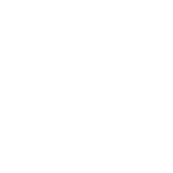 piaget light