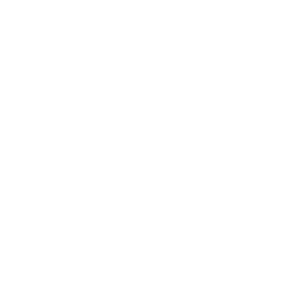 raymond_weil light